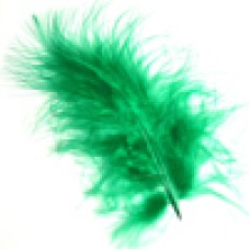 6002  217 - Chick feathers in 20's