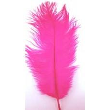 6006  143 - Medium Feathers 10's